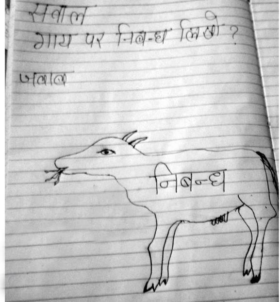 essay on a cow  jokofy pictures