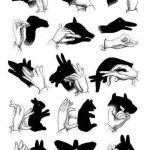 Hands Animal Shape Creativity