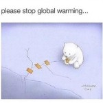 Sweet bear trying its best to stop global warming